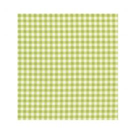 SusyBee-Gingham- Green